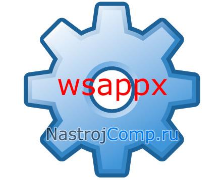 процесс wsappx - миниатюра